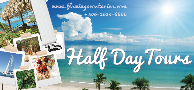 Flamingo Costa Rica Half Day Tours